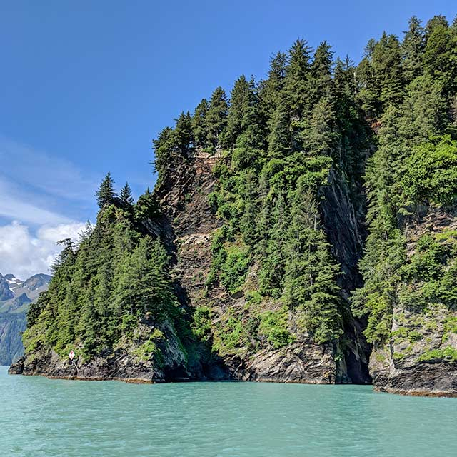 Resurrection Bay Tour Cliff